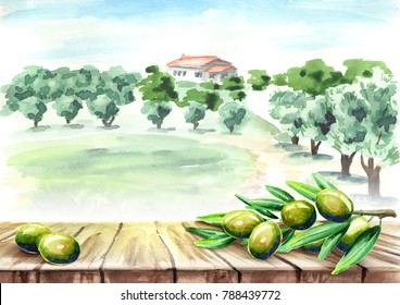 Empty table with olive brunch in olive grove landscape. Watercolor hand drawn background