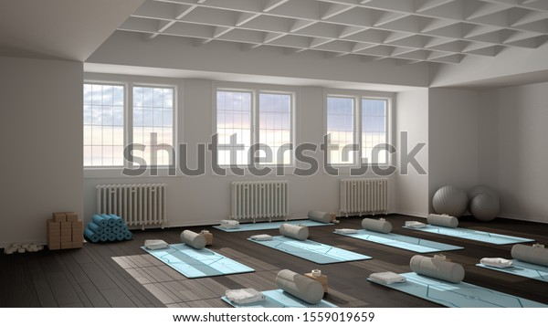 Empty Yoga Studio Interior Design Architecture Stock Illustration 1559019659