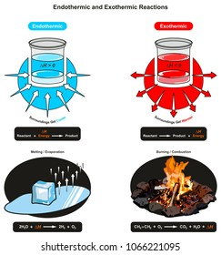 Endothermic and Exothermic Reactions infographic diagram showing relation between reactant energy and product also examples of ice cube melting and fire burning for chemistry science education