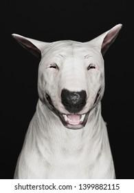 English Bull terrier 3d rendering