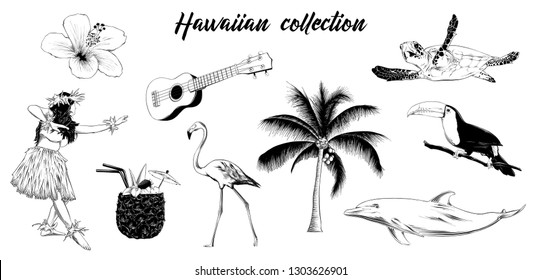 Engraved style illustration for logo, emblem, label or poster. Hand drawn sketch set of Hawaiian girl, ukulele guitar, etc. Isolated on white background. Detailed vintage doodle drawing.