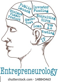 Entrepreneur thinking lean start up business idea plan in phrenology head drawing