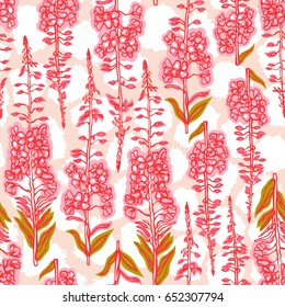 Epilobium angustifolium, Angelica, Polypodiophyta. Seamless pattern with flowering plant fireweed. Traditional Russian tea. Medical useful plant. Botanical background. Raster copy.