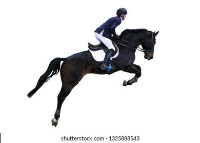 equestrian sport man rider on horse jumping polygonal  vector