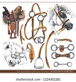 Equestrian sport set. harness horse watercolor illustration.