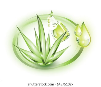 Essential oil from Aloe Vera plant with oil drops