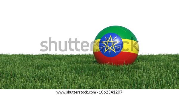Ethiopia Ethiopian flag soccer ball lying in grass, isolated on white background. 3D Rendering, Illustration.