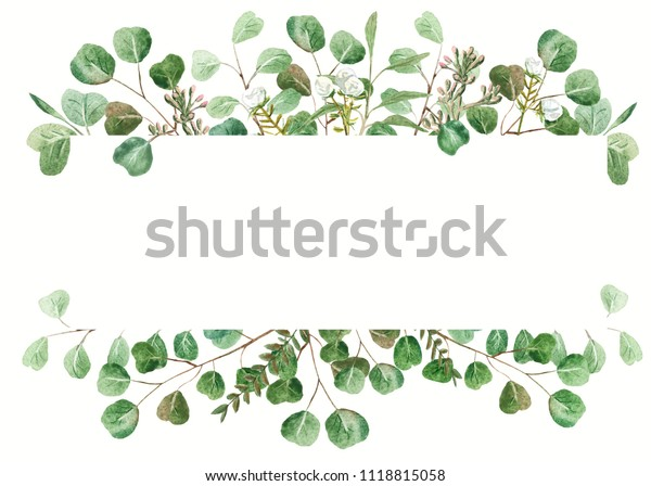 Eucalyptus Frame On White Background Wedding Stock Illustration