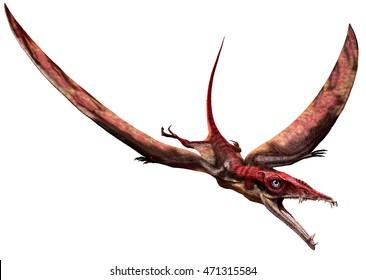 Eudimorphodon 3D illustration