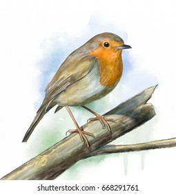European robin perched on a brand. Original digital watercolor.