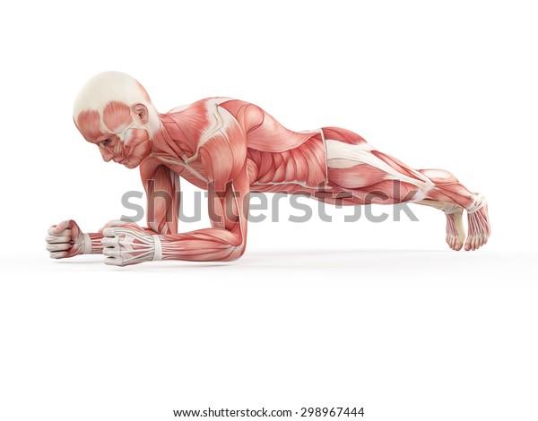 иллюстрация упражнений - доска