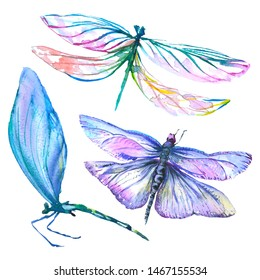 Exotic dragonfly wild insect in a watercolor style isolated. Watercolor background illustration set. Watercolour drawing fashion aquarelle isolated. Isolated dragonfly illustration element.