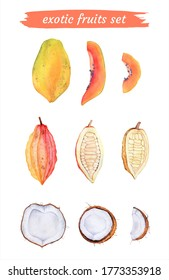 Exotic watercolor fruits isolated on white