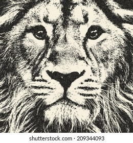 Expressive face of lion. The King of beasts, biggest cat and most dangerous predator of the world. Great for user pic, icon, label or tattoo. Amazing illustration in grunge style. Zodiac symbol.