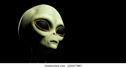 Extremely detailed and realistic high resolution 3d image of a grey alien