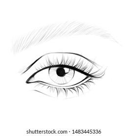 Eye. Face chart for makeup artist