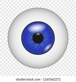 Eyeball Anatomy Images, Stock Photos & Vectors | Shutterstock
