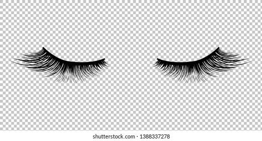 Eyelashes Icon Isolated Transparent Background