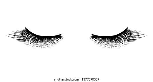 Eyelashes Icon Isolated White Background