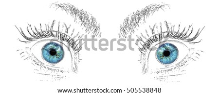 Eyes Look Drawing Stock Illustration Royalty Free Stock