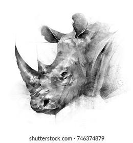 face painted rhinoceros animal on white background