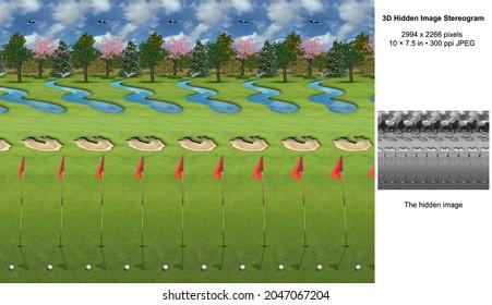 Fairway 3D Hidden Image Stereogram Illusion
