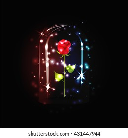 Fairy red rose with sparkle under a glass dome on black background. The Beauty and the Beast story.