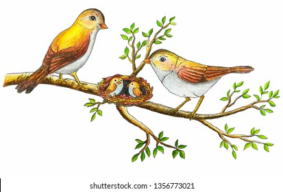 family of birds with nestlings in a nest on a tree branch