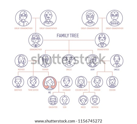 family tree pedigree ancestry chart template stock illustration