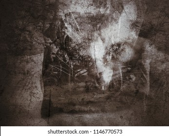 fantasy abstract art in grungy style scary dark deep emotional mood and tone with cat face, abstract background illustration for backdrop