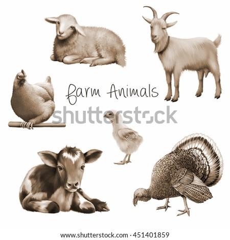 Farm Animals Laying Calf Goat Chicken Stock Illustration 451401859