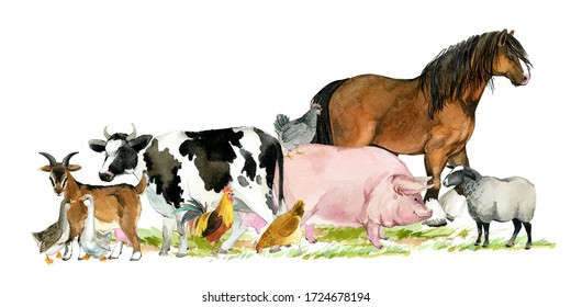 farms animal banner for design. Cute domestic pets watercolor illustration. horse. goose. pig. goat. rooster. chicken. sheep. cow