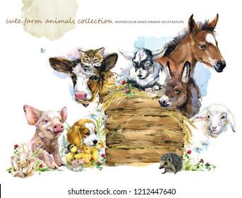 farms animal set. Cute domestic pets watercolor illustration. foal, piggy, chicken, dog, duckling, sheep, goat, calf, donkey, kitten,