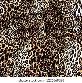 Fashionable leopard seamless. Leopard skin print.