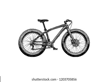 Fatbike. Ink hand drawn illustration of off-road bicycle in vintage engraved style.