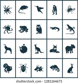 Fauna icons set with turkey, wolf, capybara and other joey elements. Isolated  illustration fauna icons.