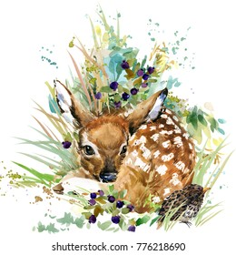 fawn. forest deer. wild animals watercolor illustration
