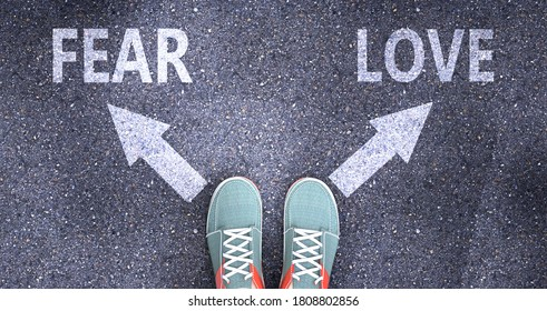 Fear and love as different choices in life - pictured as words Fear, love on a road to symbolize making decision and picking either Fear or love as an option, 3d illustration