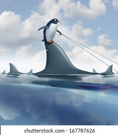 Fear Management and taking control of anxiety by overcoming and controlling your destiny as a brave penguin on a shark fin guiding the predator with a harness as a metaphor for leadership confidence.
