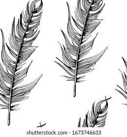 Feathers pattern. Hand-drawn sketch style bird feathers on white background. Seamless backdrop. Black on white.