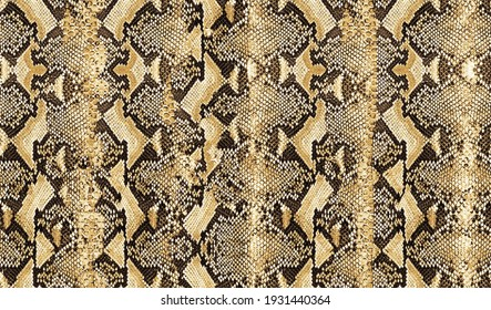 feature pattern consisting of snakeskin material