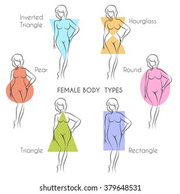 Female body types anatomy. Main woman figure shape