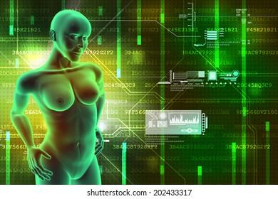 female human body