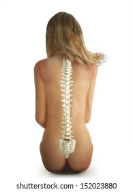 Female sitting spine concept on a white background