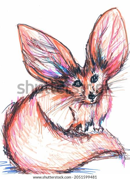 Fennec fox with big ears sketched art pen illustration