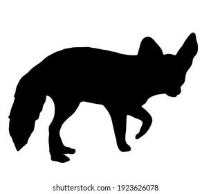 Fennec fox silhouette with big ears