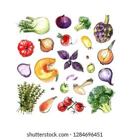 Fennel, artichoke, pumpkin, onion, greens, carrots, tomato, basil.  Composition of different vegetables painted with watercolor on a white background.  A colored sketch of vegetables.