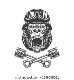 Ferocious gorilla head in biker helmet with crossed motorcycle pistons in vintage style isolated illustration
