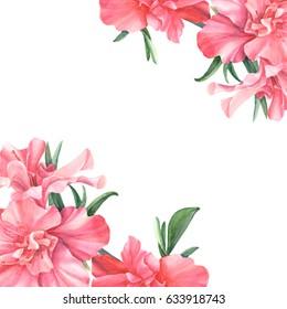 Festive invitation on white background, azalea watercolor