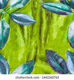 Ficus home plant leaves frame on a background of bright green drapery hand-painted illustration with space for your text.